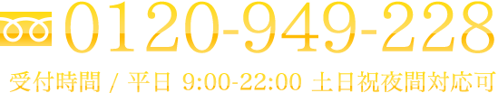 0120-949-228